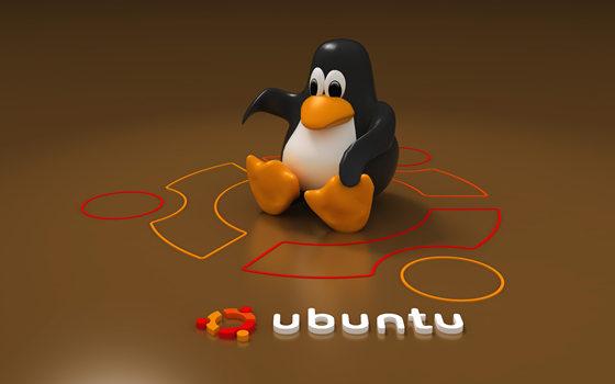 UBUNTU磁盘空间清理